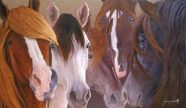 CABALLOS PERUANOS Limited to 75 40 x 68 inches $2850 Open edition: 28 x 48 inches $1475 16 x 28 inches $550