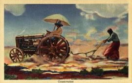 14 Conservation Postcard Series